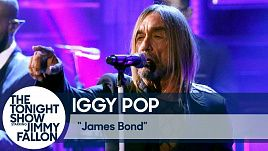 Iggy Pop - James Bond (Live at the Tonight Show)