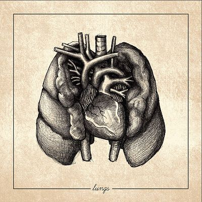 Regrowth - Lungs