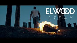 Elwood Stray - You Lost
